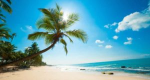 Great Holiday Destination Ideas in the USA